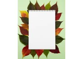 笔记本顶视图有秋叶的_11282065