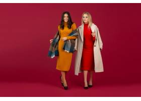 秋天冬天时尚礼服和外套摆在的两个时髦的妇_12153642