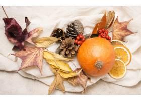 秋天安排顶视图用柑橘和叶子_9700356