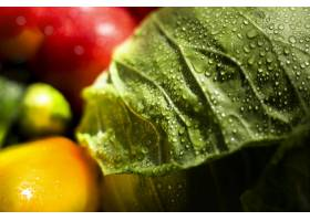 新鲜的秋季蔬菜的特写镜头各种各样_9851335