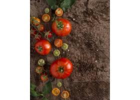新鲜的蕃茄框架与拷贝空间_10109033