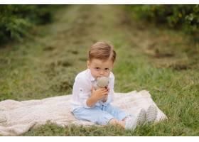小男孩坐野餐格子花呢披肩在村庄庭院里_9409276