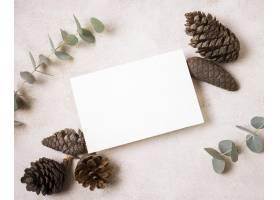 平的纸纸与杉木锥体和植物的秋天_9700214