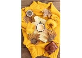 平躺秋天元素安排在毛线衣_9596716