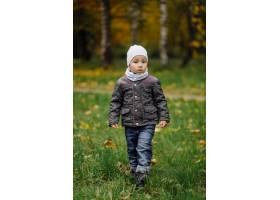 妈妈和儿子在秋天公园一起走和乐趣_11030037