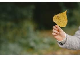 孩子在秋天公园孩子穿着一件灰色的外套_11193448