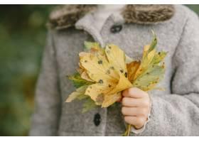 孩子在秋天公园孩子穿着一件灰色的外套_11193468