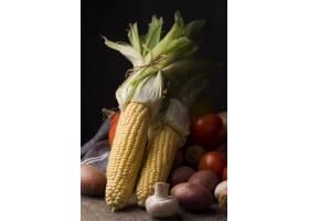 前视图玉米和秋天蔬菜安排_9605325