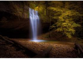 秋天树围拢的瀑布的美丽的射击和叶子在森林_11890807