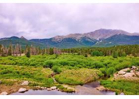 绿色山脉围拢的一个美丽的森林的迷人的射击_14890792