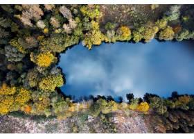 森林围拢的美丽的湖的鸟瞰图  伟大为壁纸_14266919
