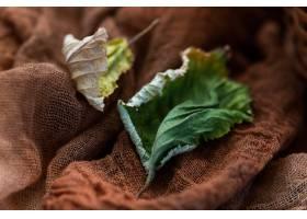 干秋叶顶视图在一张黑暗的棕色桌上_13962884
