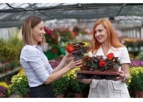 温室所有者将鲜花选项呈现给潜在的客户零售_11176242