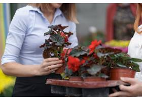 温室所有者将鲜花选项呈现给潜在的客户零售_11177395
