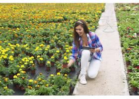 检查盆的植物的新鲜的女性卖花人在庭院中心