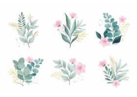 水彩叶子和鲜花集_12295541