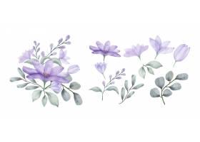 一套鲜花涂有水彩画_137447