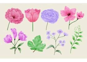 一套鲜花涂有水彩画陪伴各种卡片和贺卡_156430