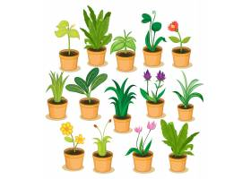 盆栽植物和鲜花例证_1164218