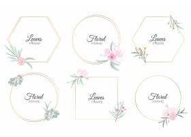 手绘水彩花卉框架集合_13216238