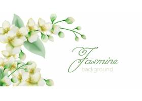 水彩绿色茉莉花花横幅与文本的地方_7424614