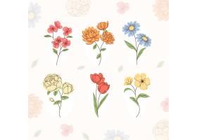 有机平面花卉收集_13900282