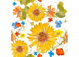 五颜六色的花卉无缝的样式例证从公共领域_16342623