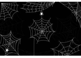 万圣节蜘蛛网壁纸_9590171