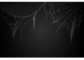 万圣节蜘蛛网背景设计