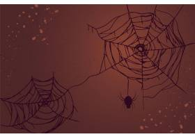 万圣节蜘蛛网壁纸_9386494