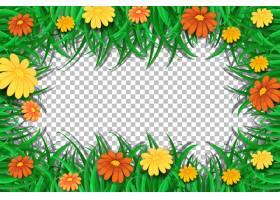花和叶子框架模板在透明背景