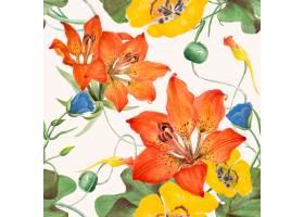 花卉无缝的样式背景例证从公共领域的艺术_16406111