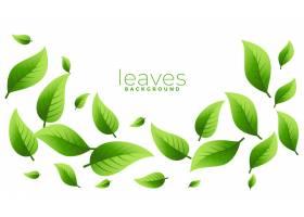 浮动或落的绿色离开与copyspace的背景设计