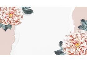 盛开的花卉牡丹壁纸矢量