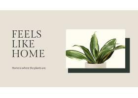 鼓舞人心的引用植物模板PSD与Sansevieria植_17860969